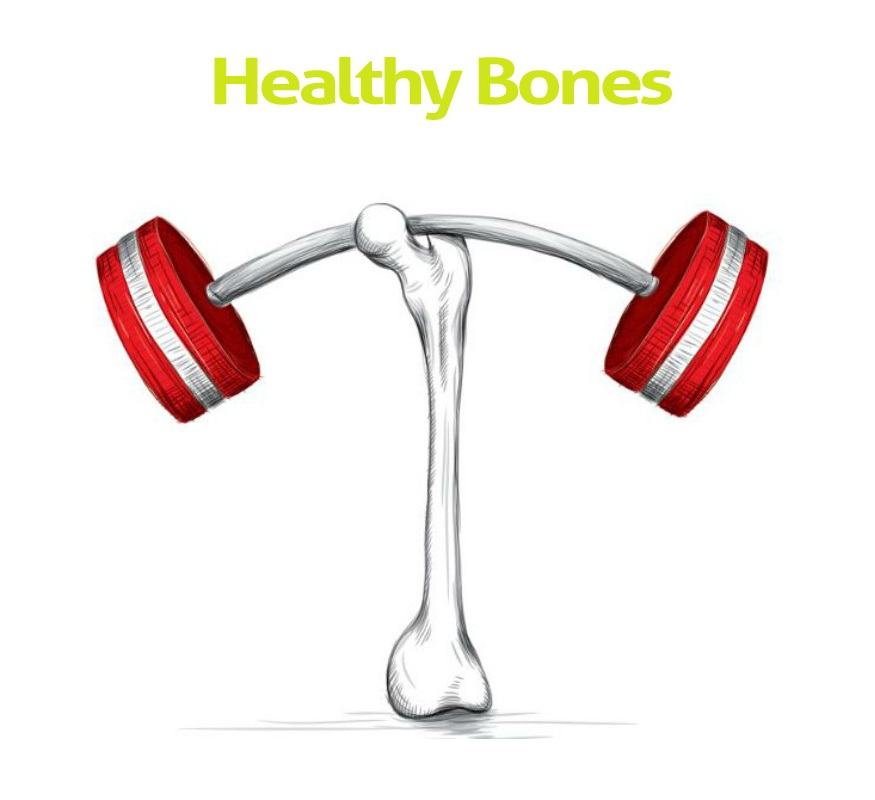 Helps in Strengthening Bones