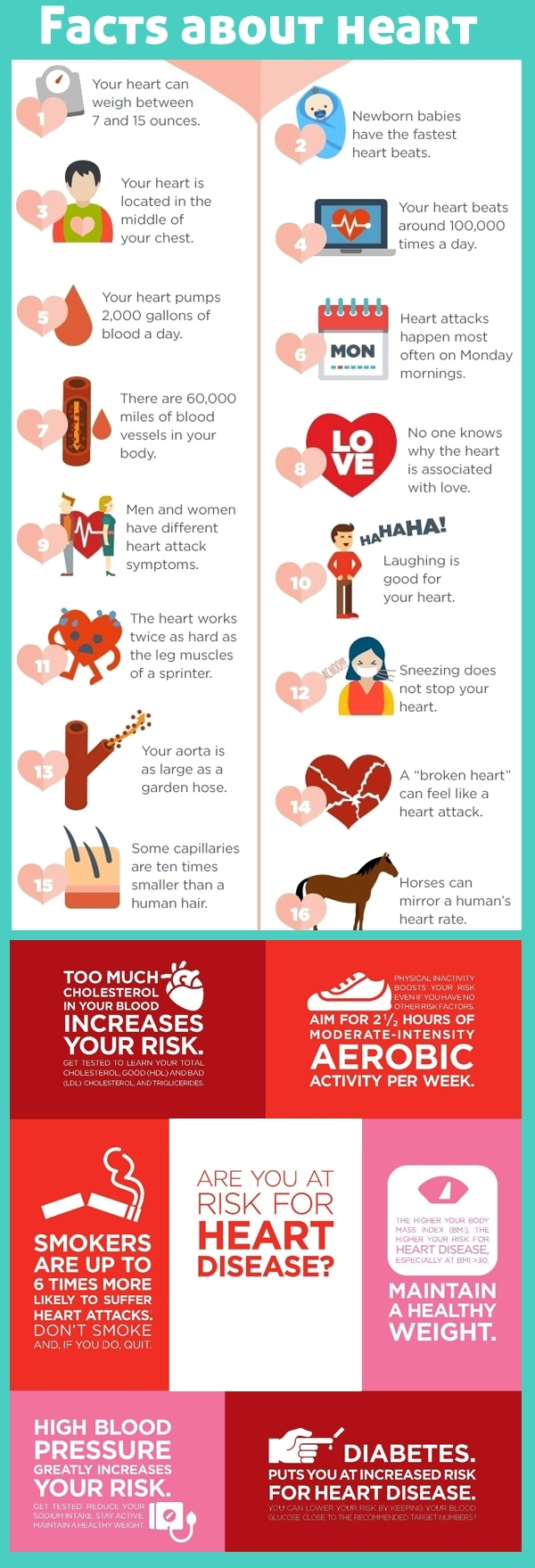 Healthy Foods to Reduce the Risk of Heart Attack