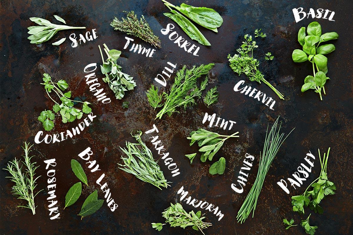 Leafy treats