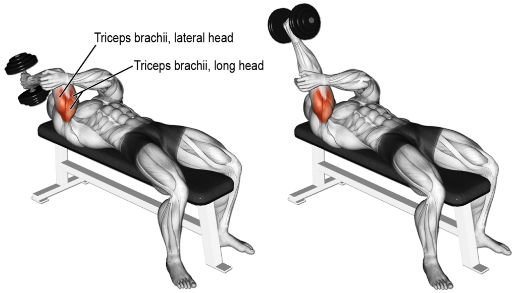 Dumbell Triceps Extension
