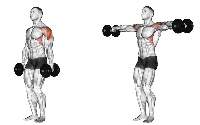 Side Lateral Raises